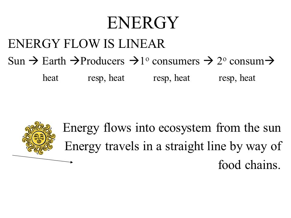 ENERGY ENERGY FLOW IS LINEAR Energy flows into ecosystem from the sun
