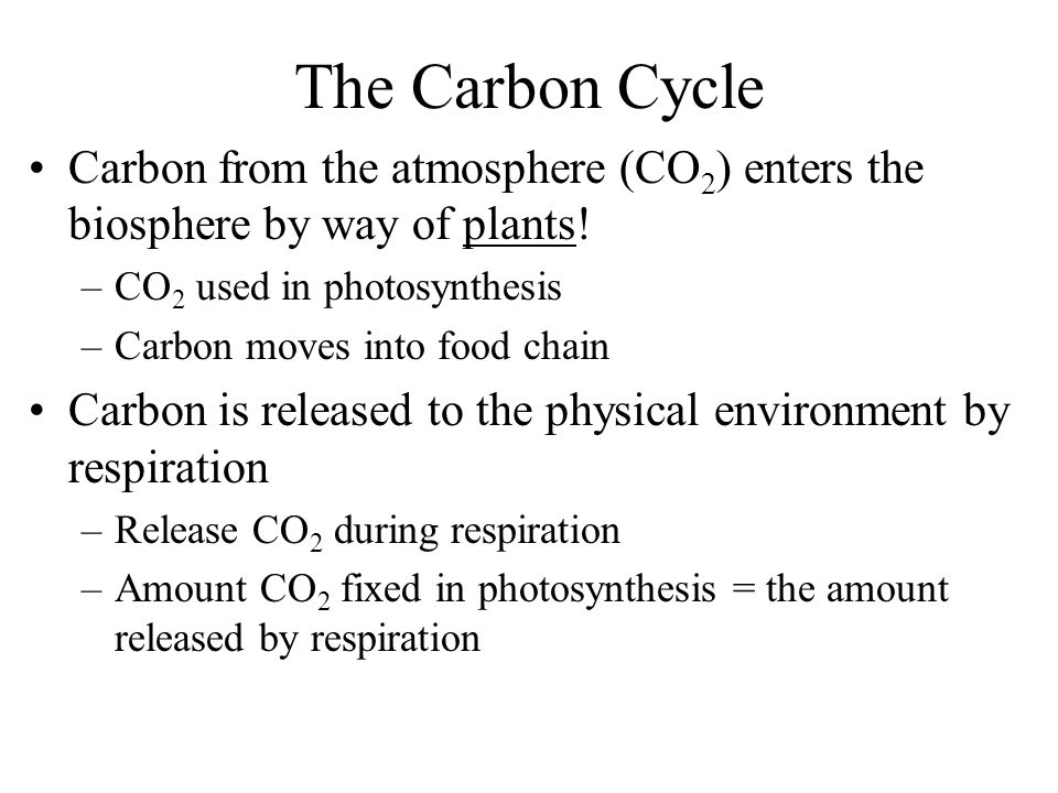 The Carbon Cycle Carbon from the atmosphere (CO2) enters the biosphere by way of plants! CO2 used in photosynthesis.