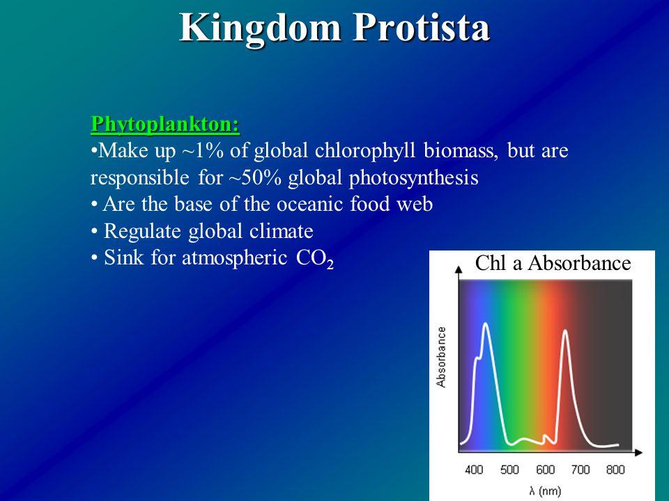 Kingdom Protista Phytoplankton: