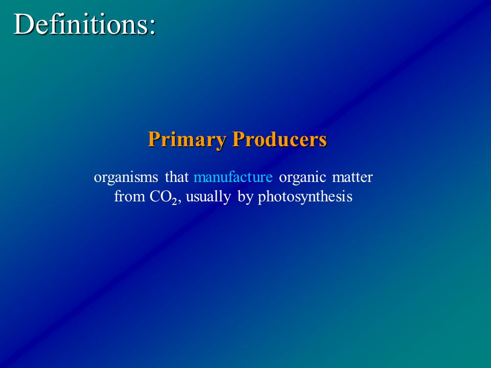 Definitions: Primary Producers