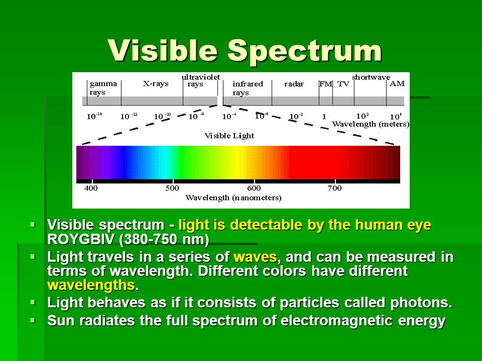 Visible Spectrum Visible spectrum - light is detectable by the human eye ROYGBIV (380-750 nm)