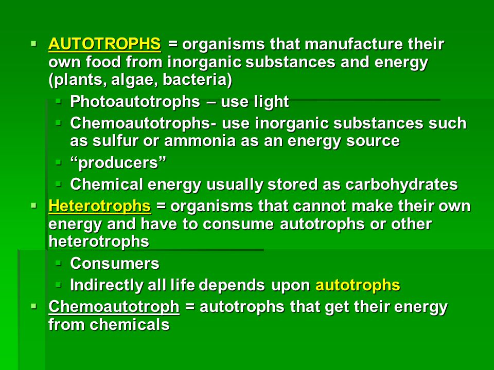 AUTOTROPHS = organisms that manufacture their own food from inorganic substances and energy (plants, algae, bacteria)