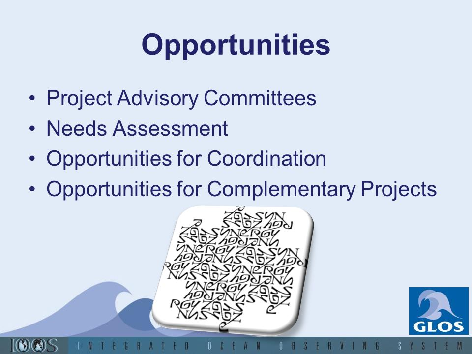 Opportunities Project Advisory Committees Needs Assessment