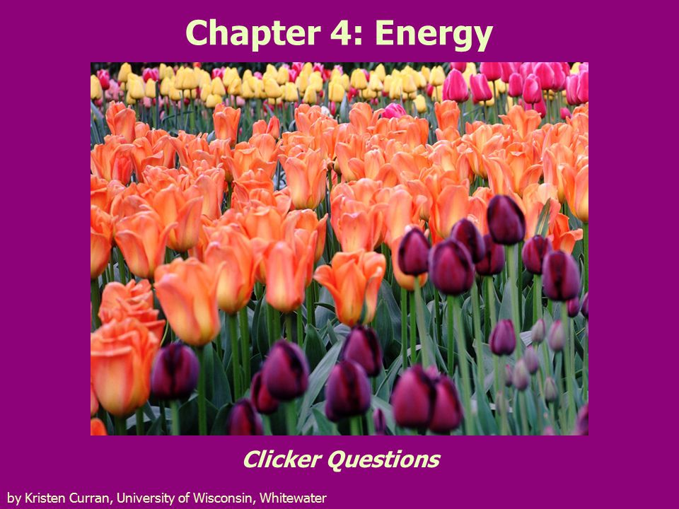 Chapter 4: Energy Clicker Questions