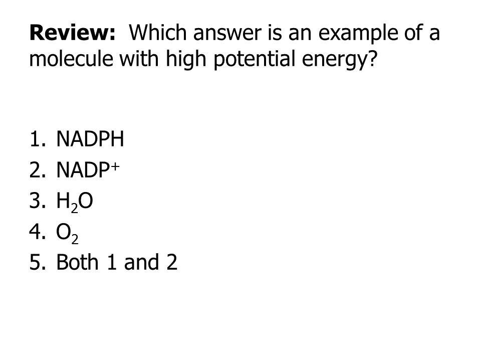 Review: Which answer is an example of a molecule with high potential energy