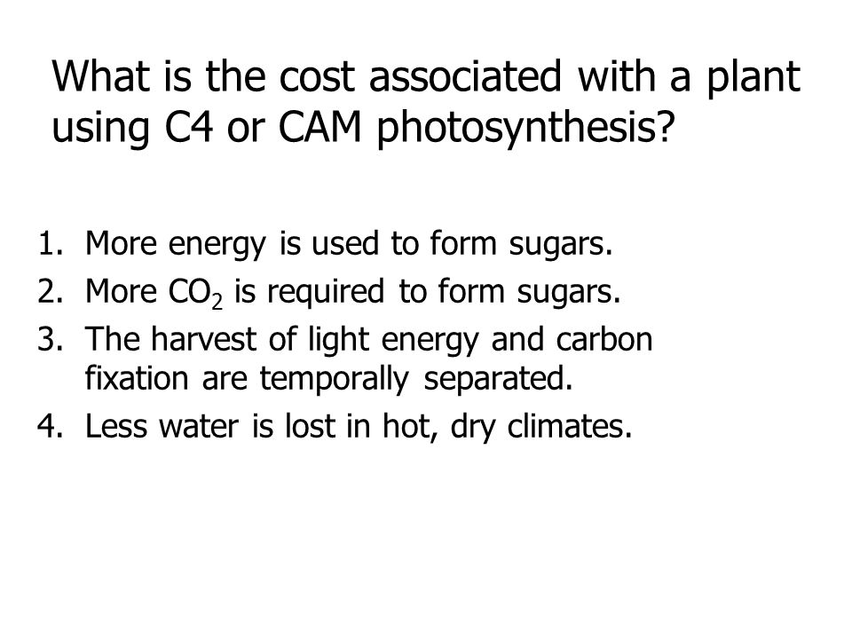 What is the cost associated with a plant using C4 or CAM photosynthesis