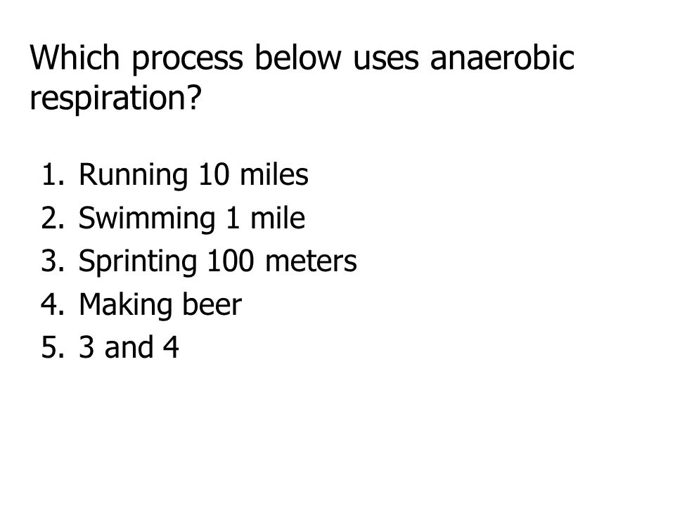 Which process below uses anaerobic respiration