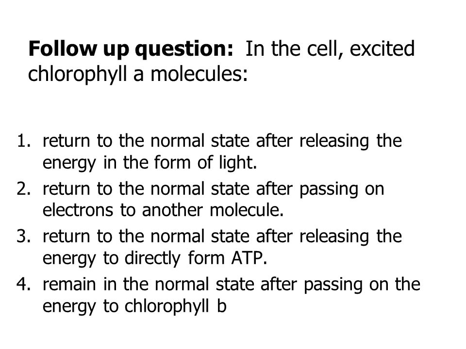 Follow up question: In the cell, excited chlorophyll a molecules: