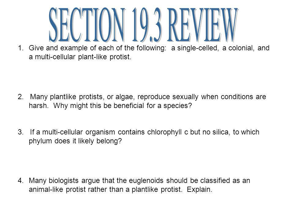 SECTION 19.3 REVIEW Give and example of each of the following: a single-celled, a colonial, and a multi-cellular plant-like protist.