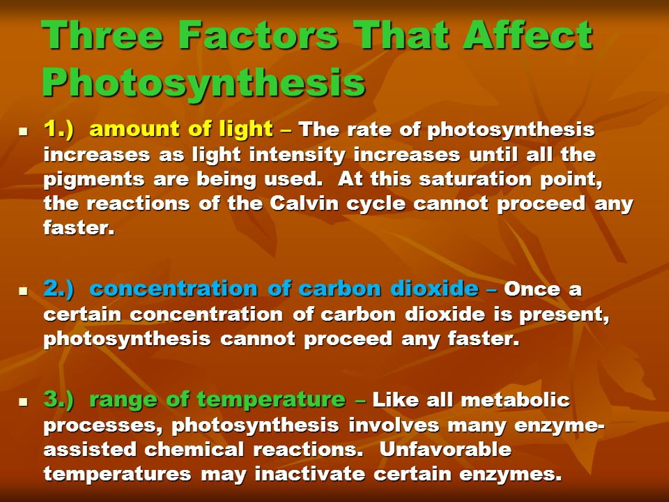affect photosythesis Factors affecting the rate of photosynthesis the term rate always involves time,  so the rate of photosynthesis can be considered to be how fast photosynthesis.