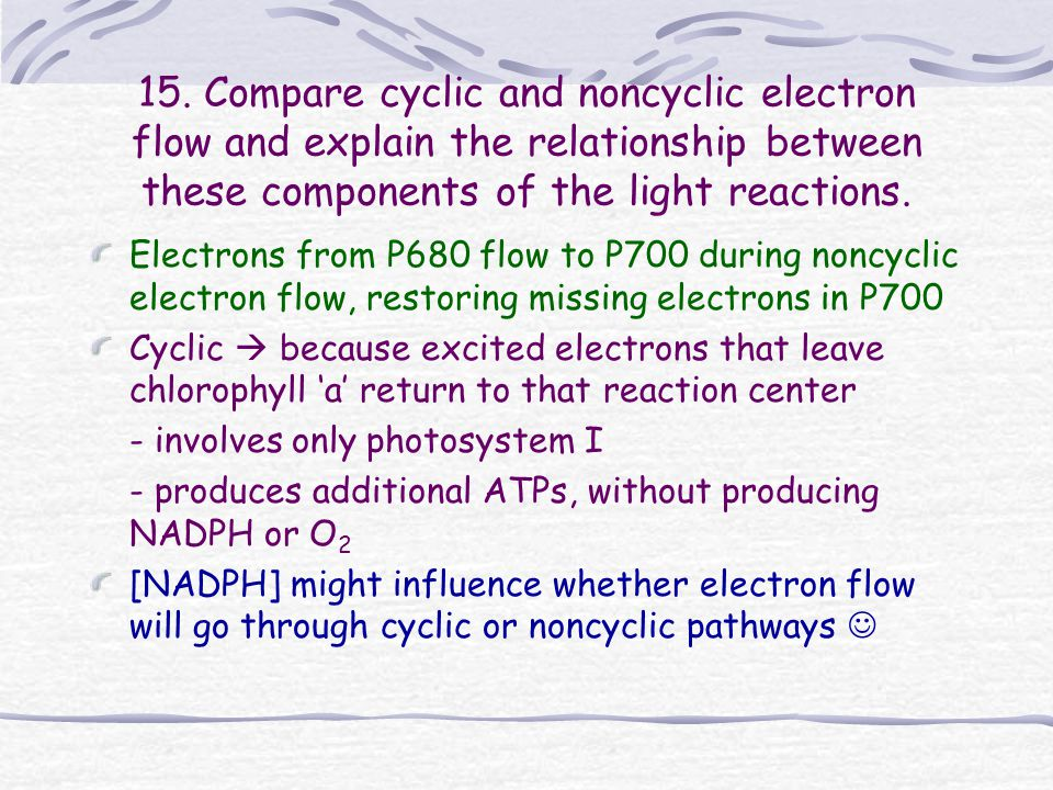 15. Compare cyclic and noncyclic electron flow and explain the relationship between these components of the light reactions.
