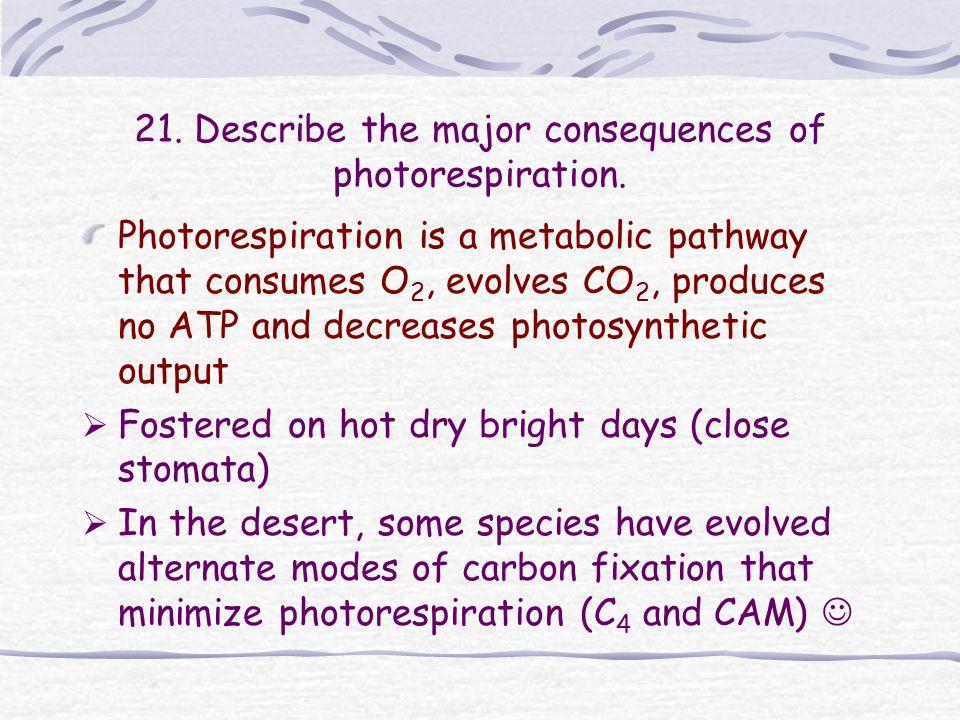 21. Describe the major consequences of photorespiration.