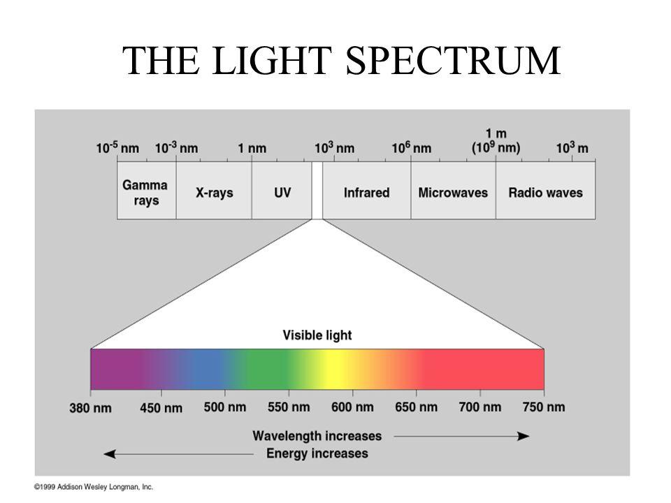 THE LIGHT SPECTRUM