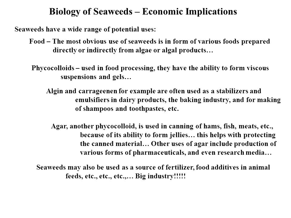 Biology of Seaweeds – Economic Implications