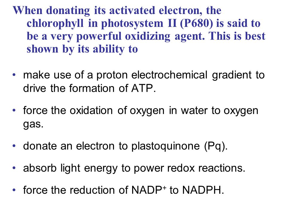 When donating its activated electron, the chlorophyll in photosystem II (P680) is said to be a very powerful oxidizing agent. This is best shown by its ability to