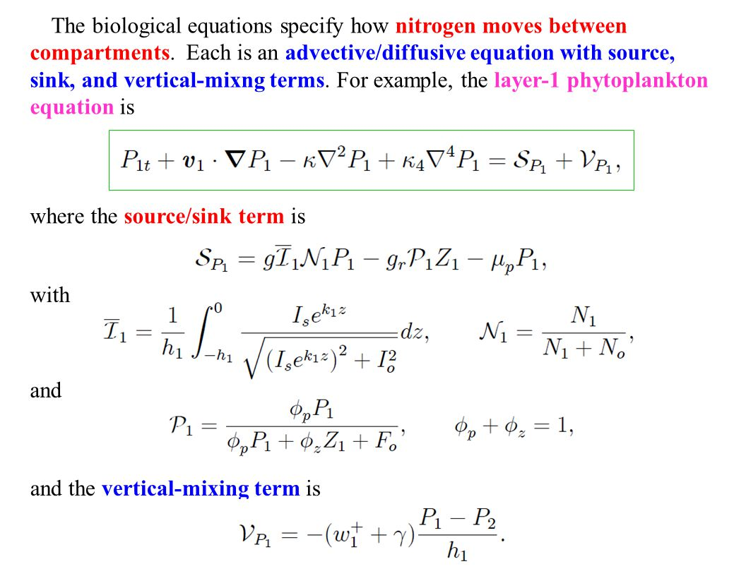 The biological equations specify how nitrogen moves between compartments. Each is an advective/diffusive equation with source, sink, and vertical-mixng terms. For example, the layer-1 phytoplankton equation is