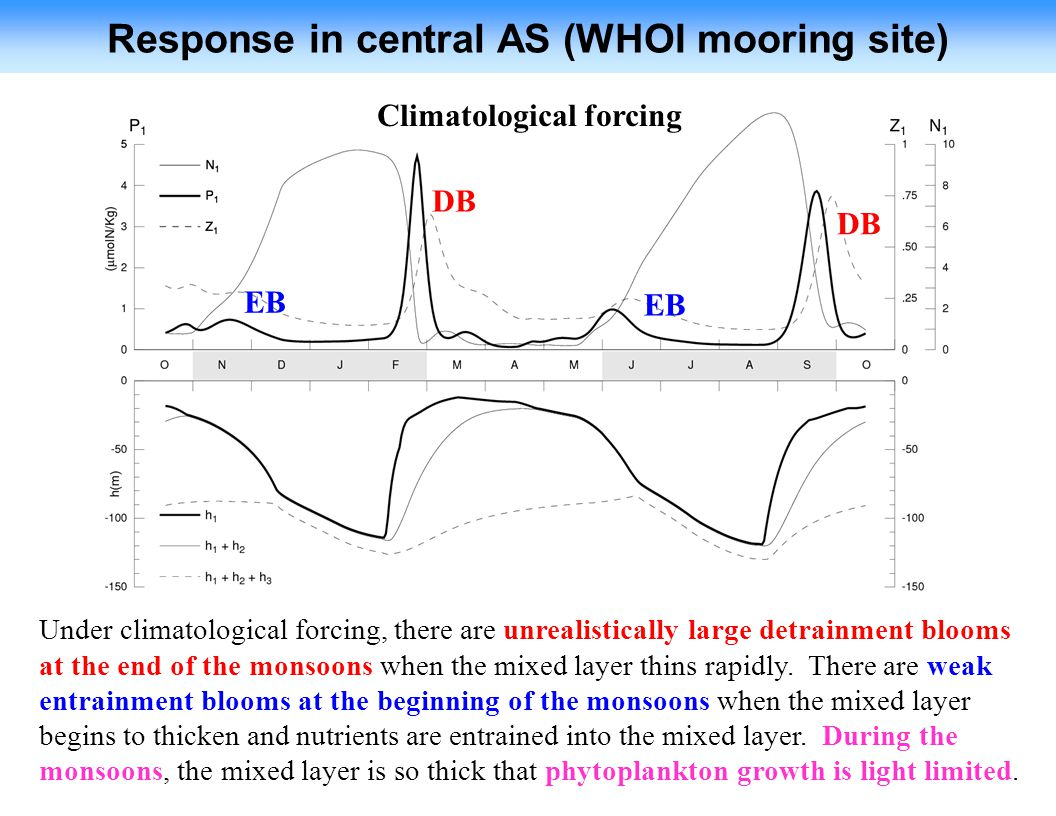 Response in central AS (WHOI mooring site) Climatological forcing