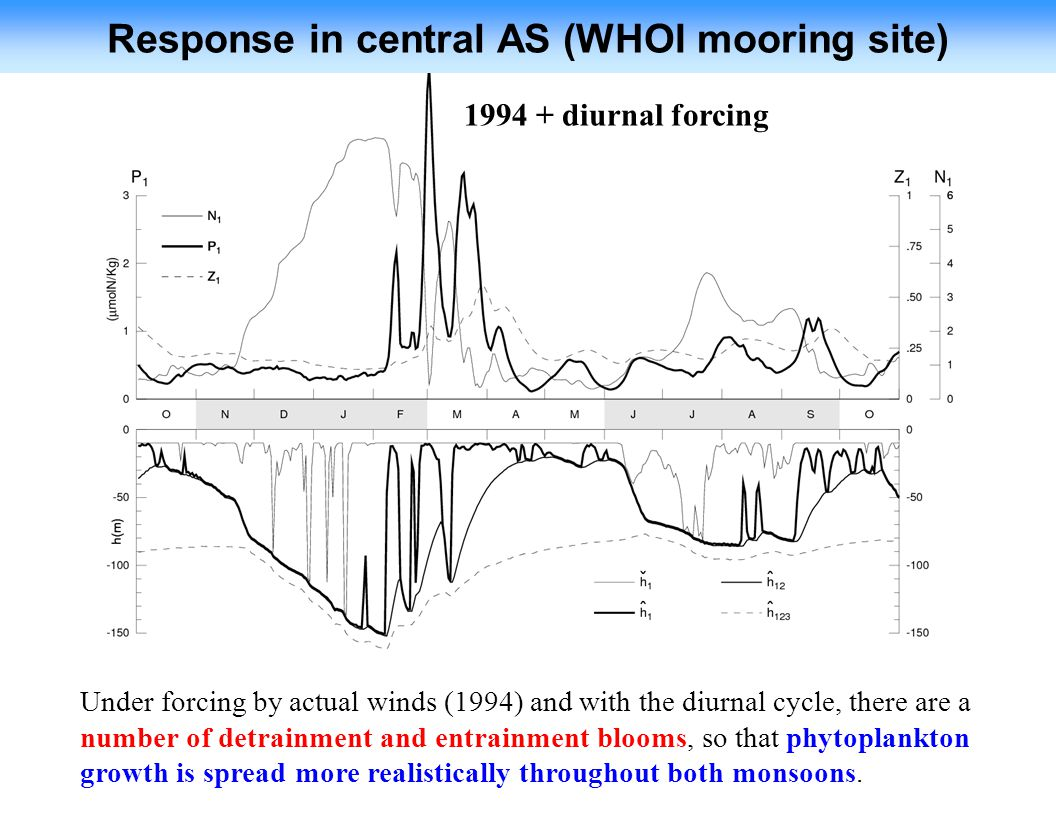 Response in central AS (WHOI mooring site)