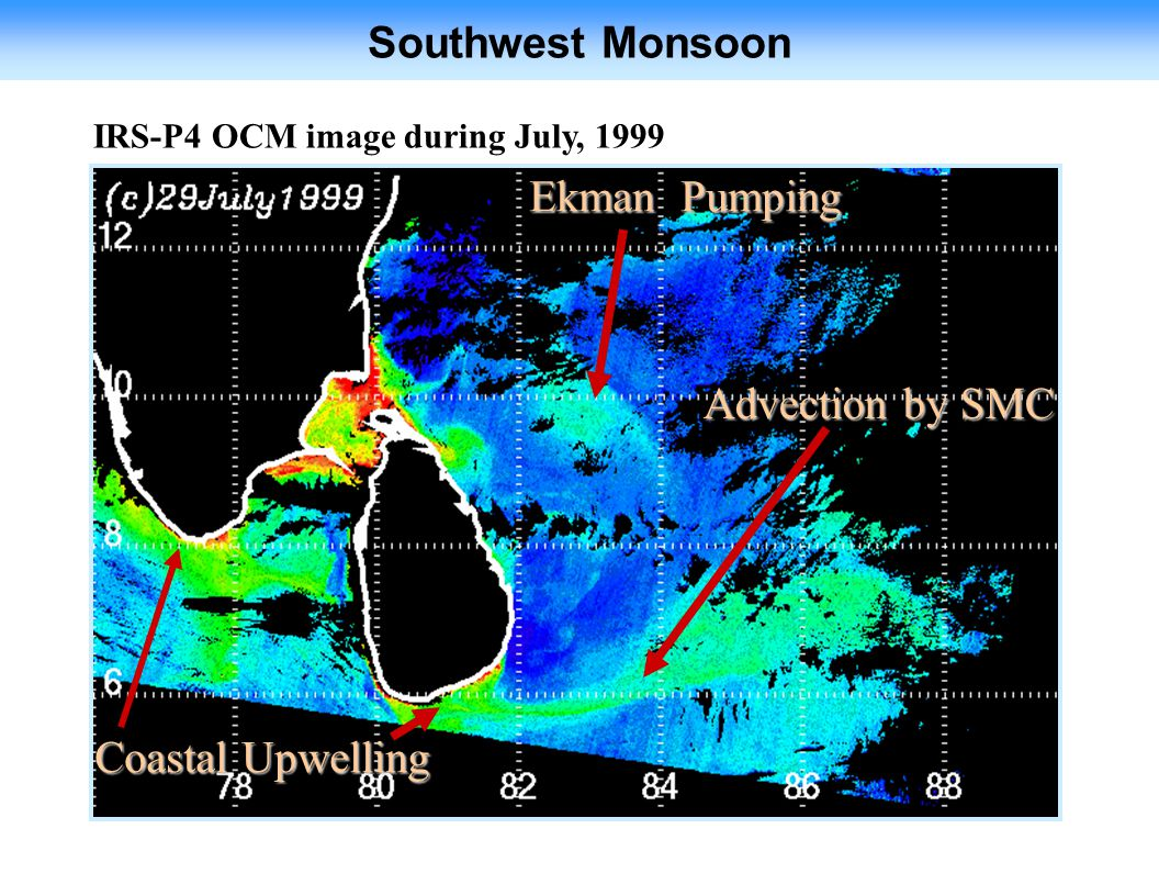 Ekman Pumping Advection by SMC Coastal Upwelling Southwest Monsoon