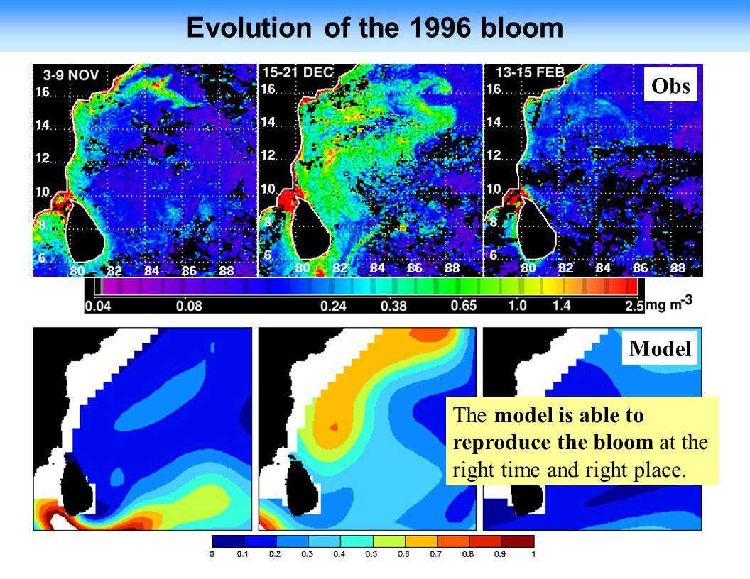 Evolution of the 1996 bloom Obs Model