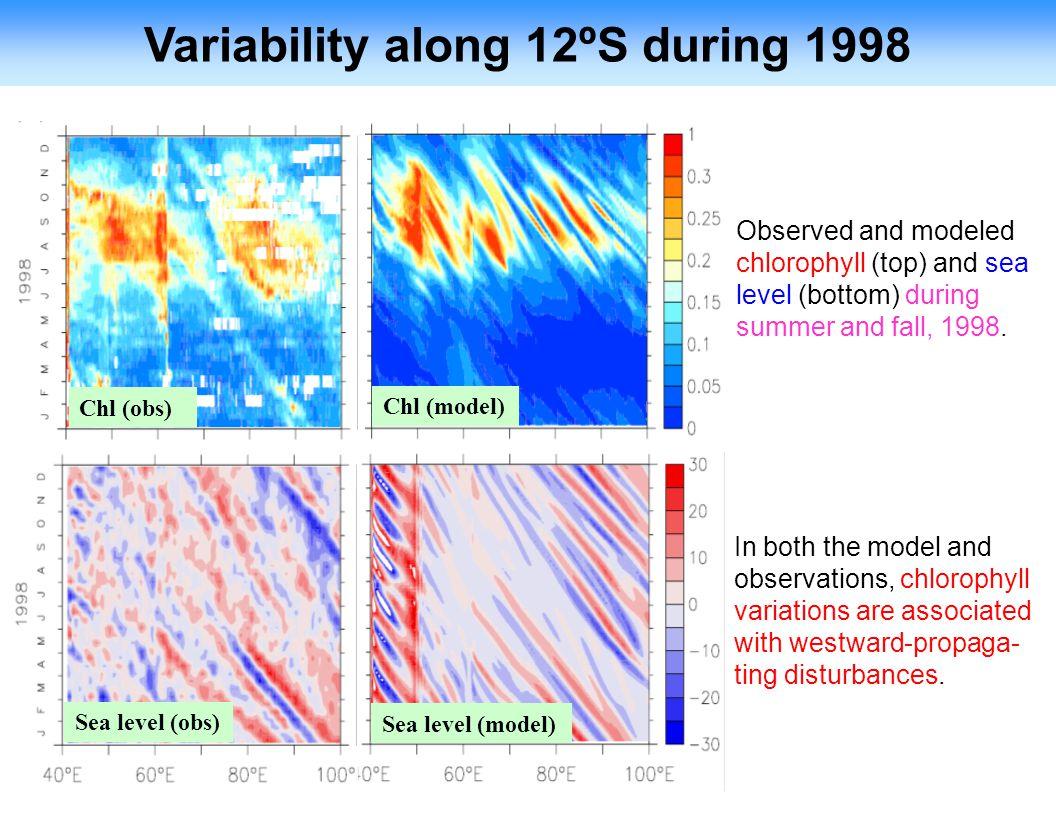 Variability along 12ºS during 1998