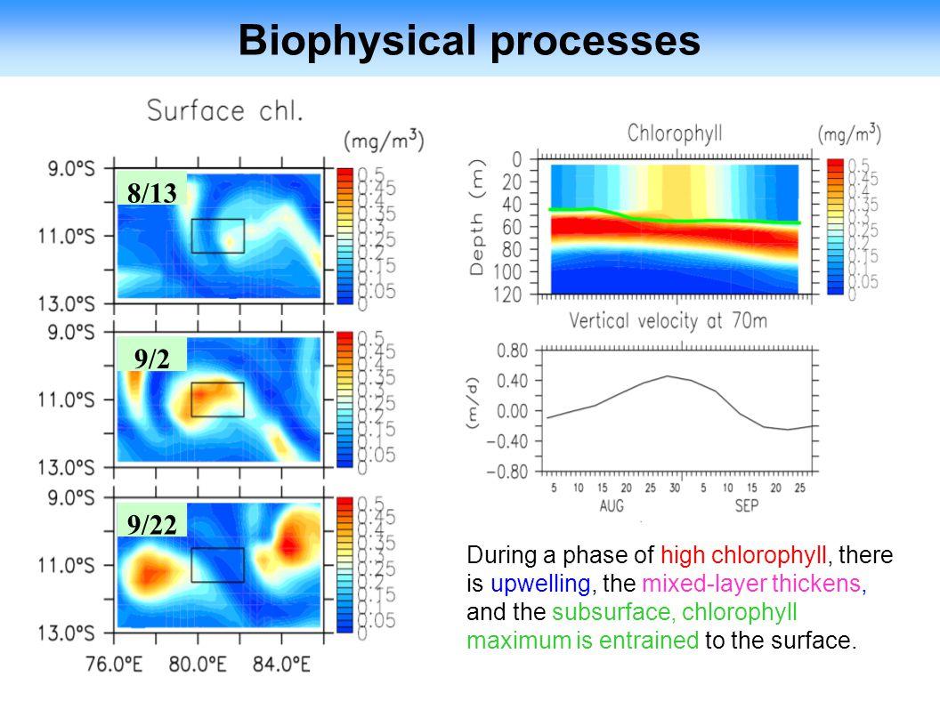 Biophysical processes