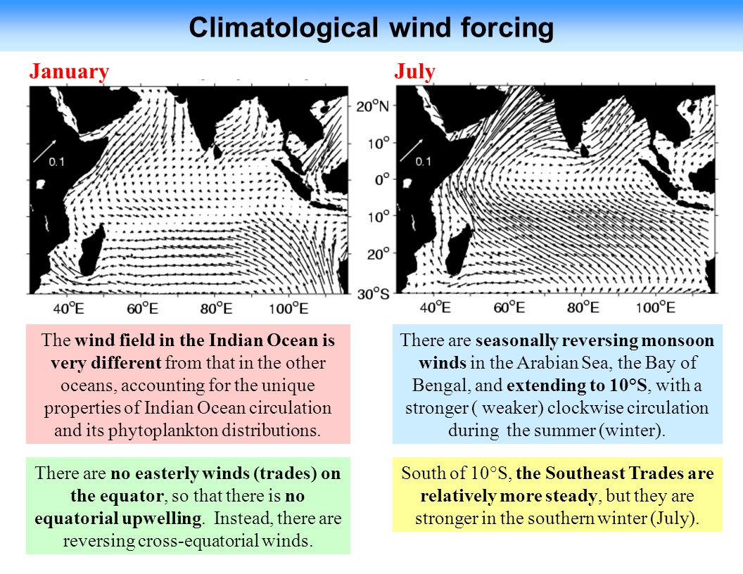 Climatological wind forcing