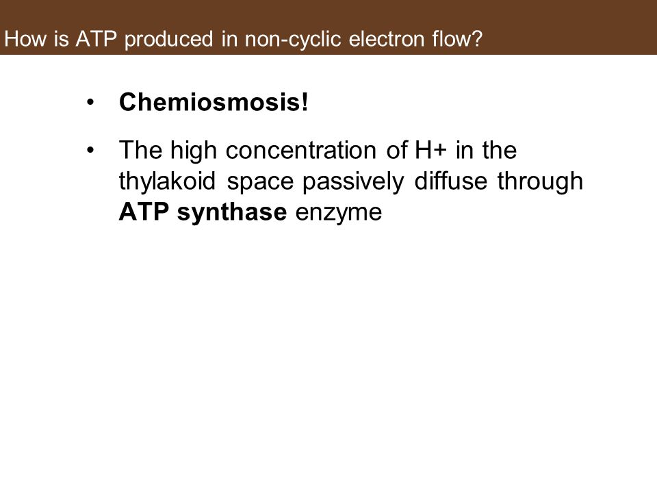 How is ATP produced in non-cyclic electron flow