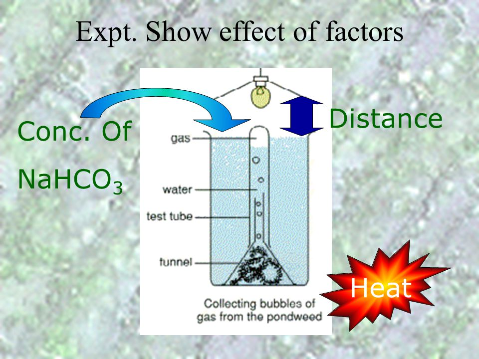 Expt. Show effect of factors