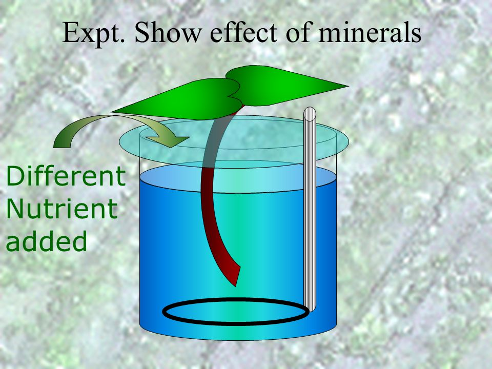 Expt. Show effect of minerals