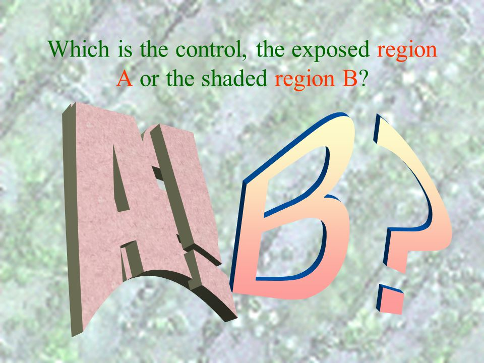 Which is the control, the exposed region A or the shaded region B