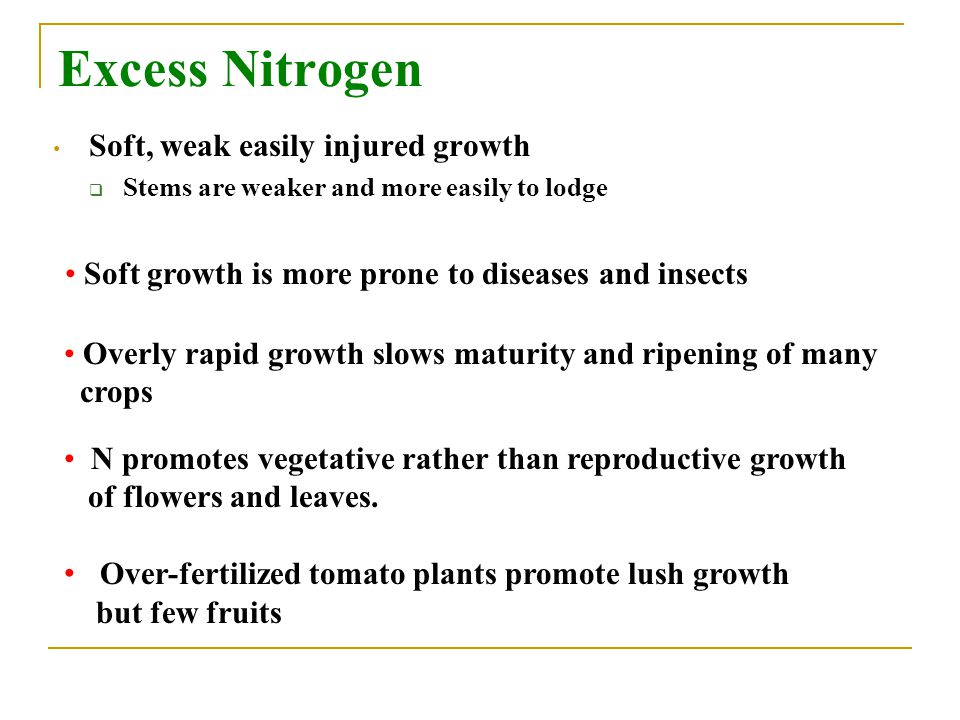 Excess Nitrogen Soft, weak easily injured growth