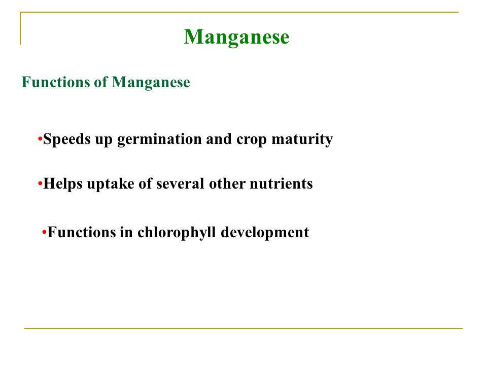 Manganese Functions of Manganese