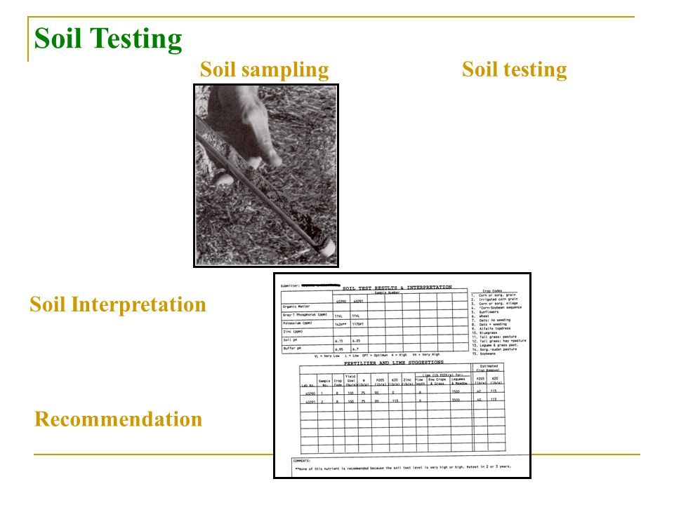 Soil Testing Soil sampling Soil testing Soil Interpretation