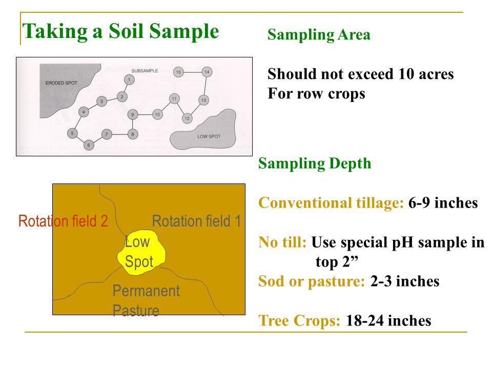 Taking a Soil Sample Sampling Area Should not exceed 10 acres