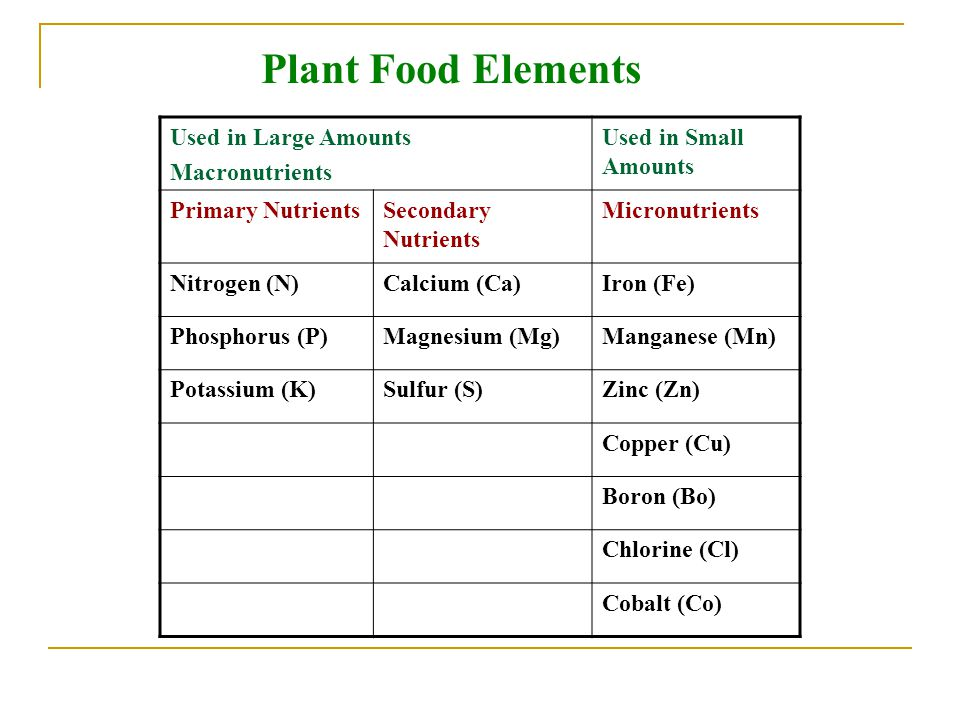 Plant Food Elements Used in Large Amounts Macronutrients
