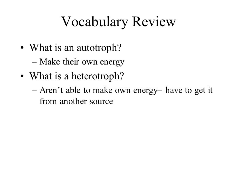 Vocabulary Review What is an autotroph What is a heterotroph