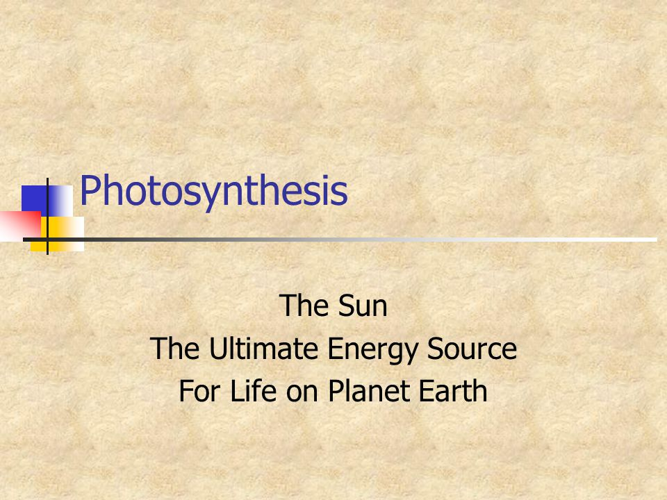 The Sun The Ultimate Energy Source For Life on Planet Earth