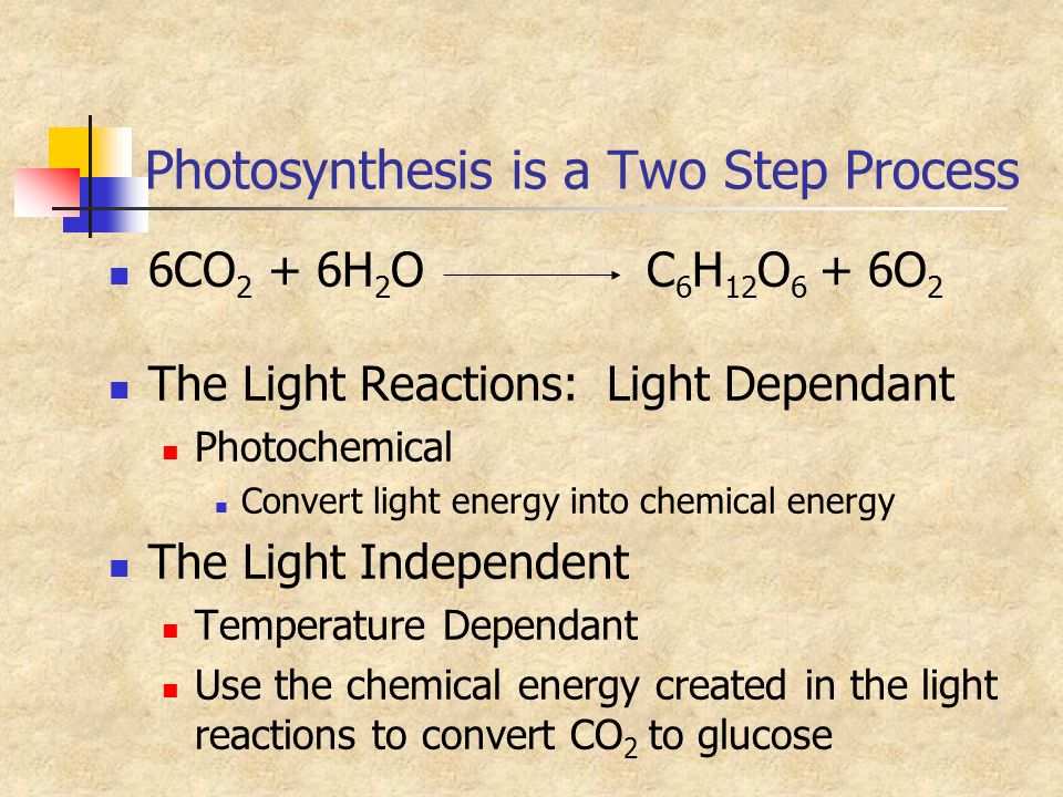 Photosynthesis is a Two Step Process