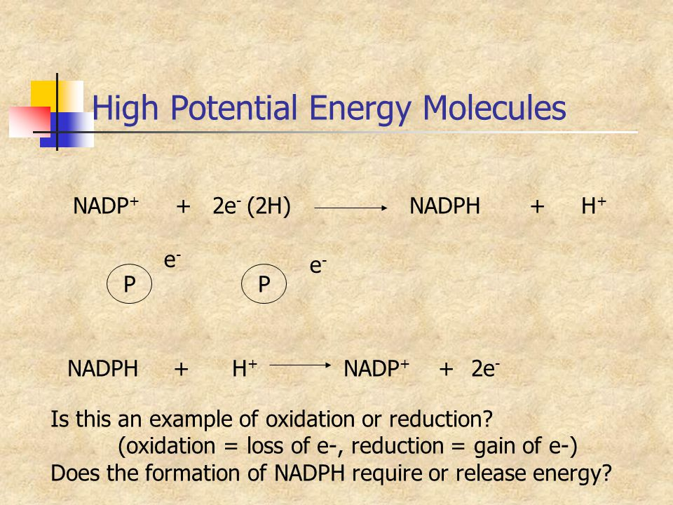 High Potential Energy Molecules