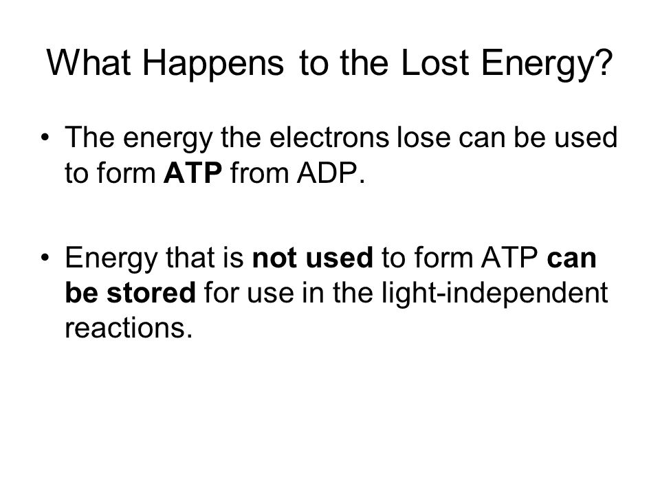What Happens to the Lost Energy