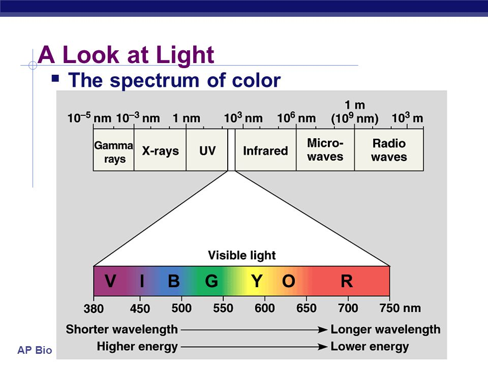 A Look at Light The spectrum of color V I B G Y O R