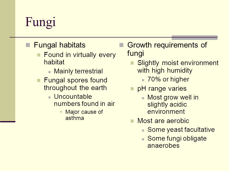 Fungi Fungal habitats Growth requirements of fungi