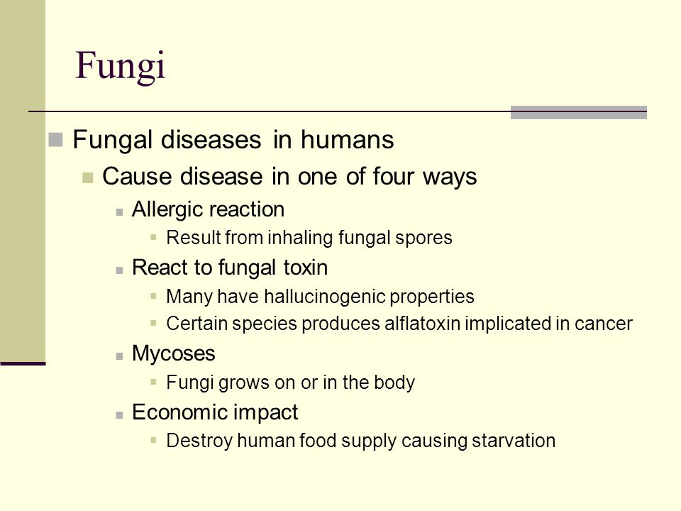 Fungi Fungal diseases in humans Cause disease in one of four ways