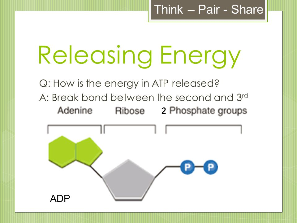 Releasing Energy Think – Pair - Share