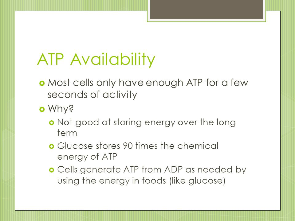 ATP Availability Most cells only have enough ATP for a few seconds of activity. Why Not good at storing energy over the long term.