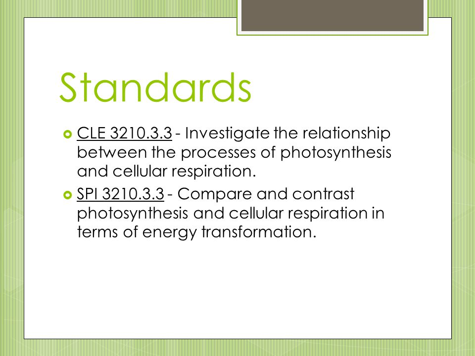 Standards CLE 3210.3.3 - Investigate the relationship between the processes of photosynthesis and cellular respiration.