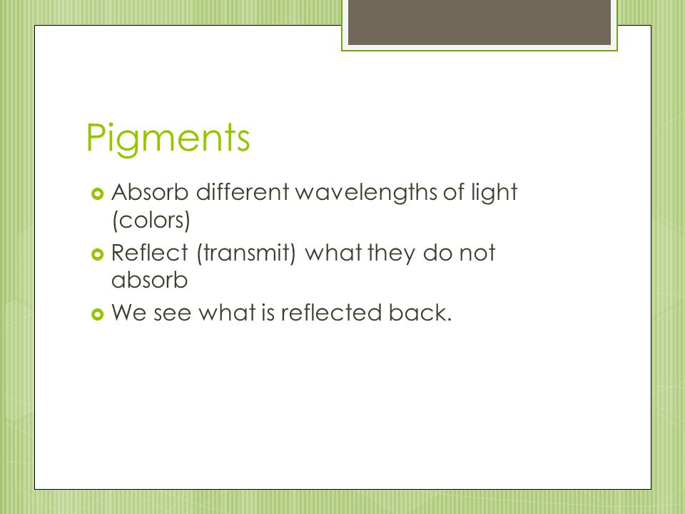 Pigments Absorb different wavelengths of light (colors)