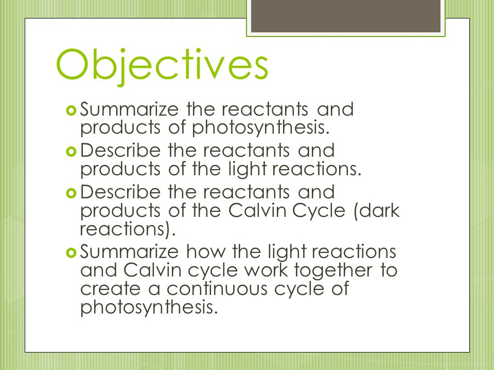 Objectives Summarize the reactants and products of photosynthesis.