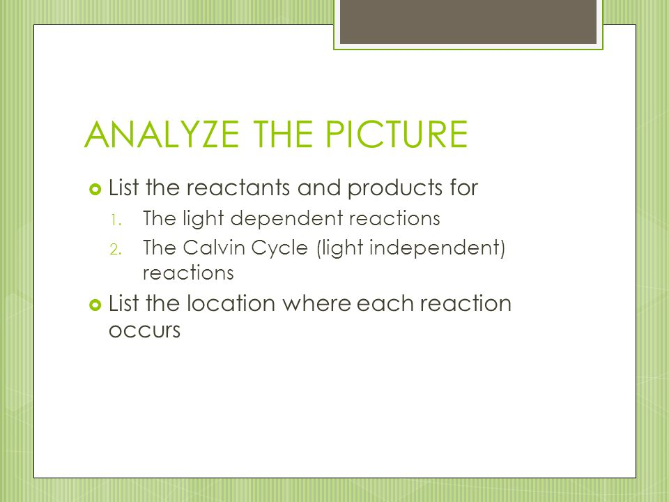ANALYZE THE PICTURE List the reactants and products for